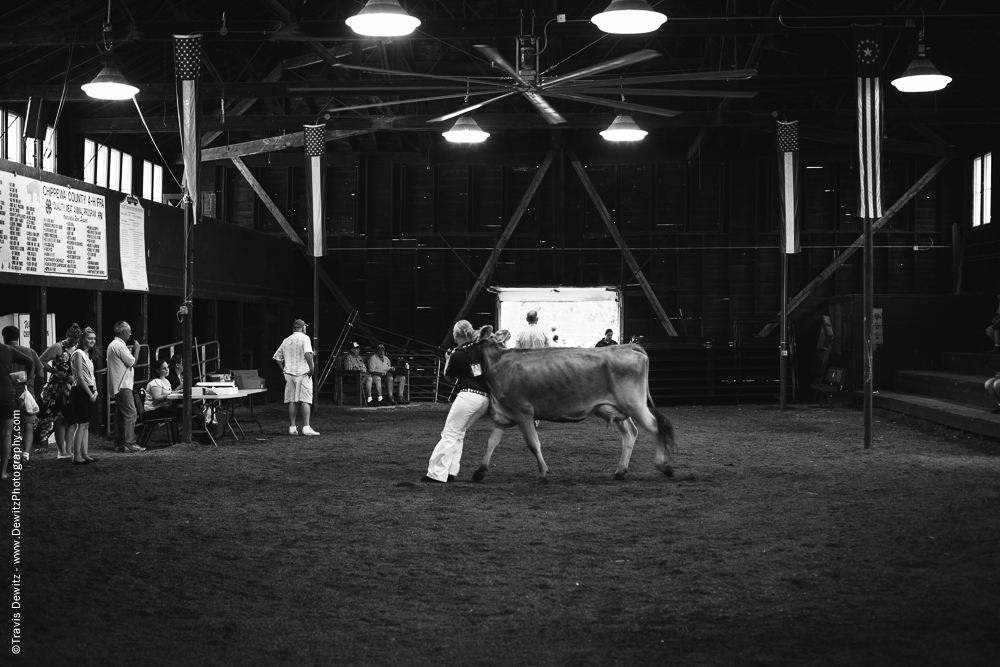 Northern Wisconsin State Fair Girl Holding Cow Back