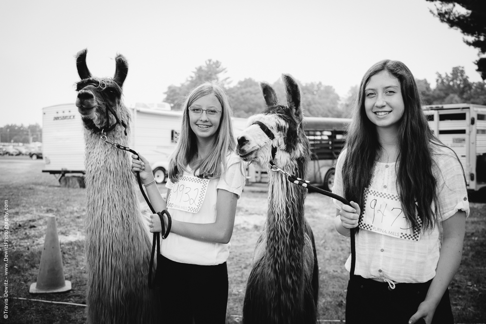 Northern Wisconsin State Fair Girls With Their Lamas