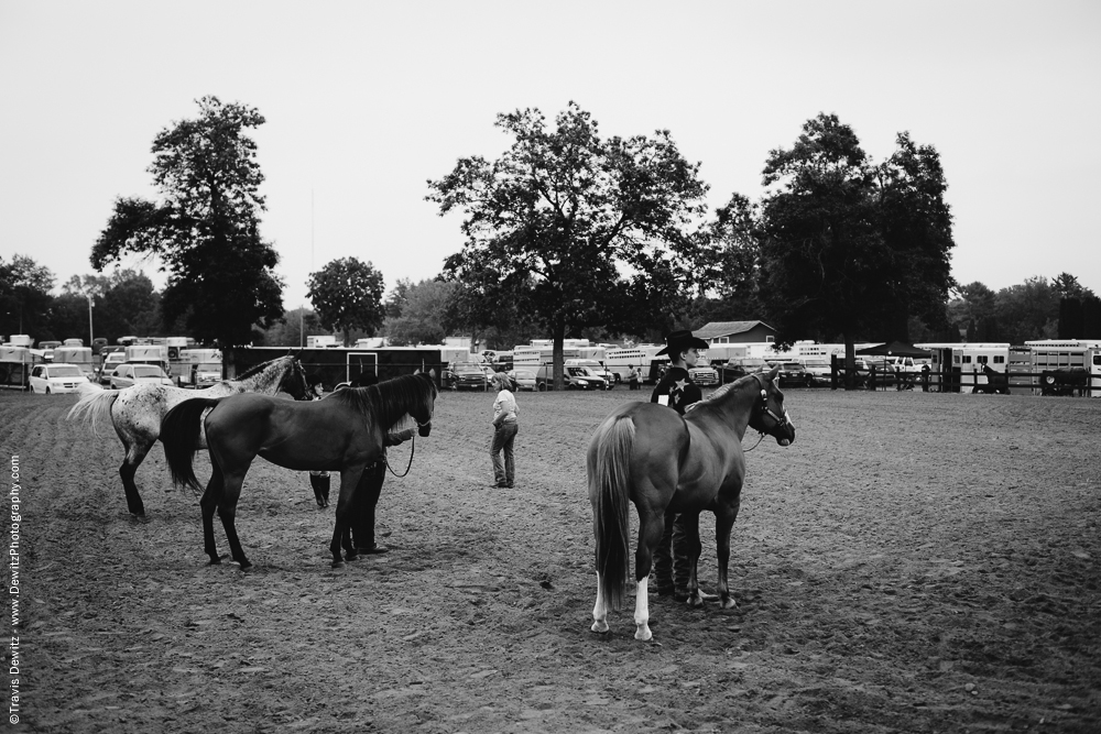 Northern Wisconsin State Fair Horses in Arena