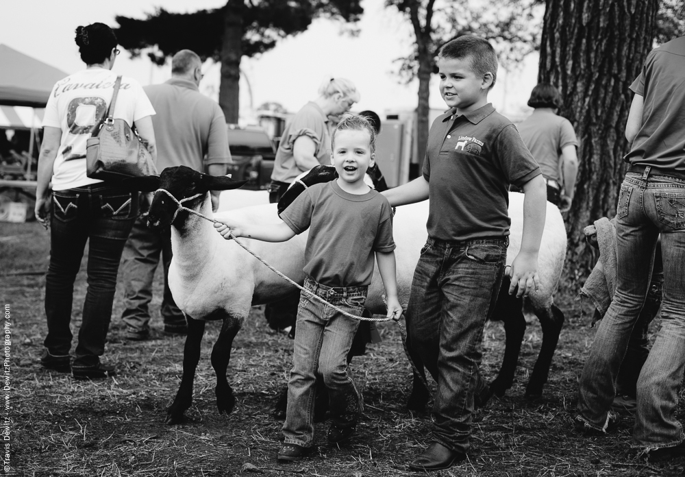 Northern Wisconsin State Fair Kids Showing Sheep