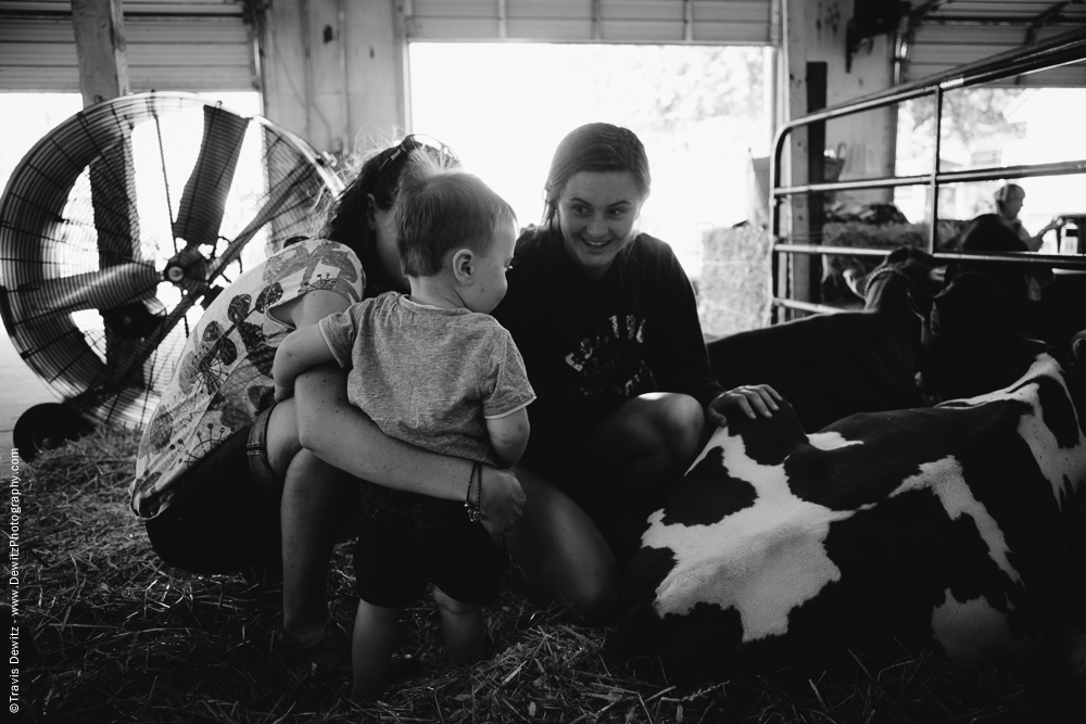 Northern Wisconsin State Fair Showing Little Boy the Cow