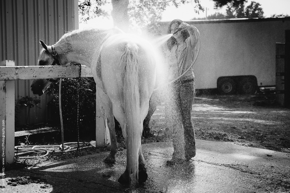 Northern Wisconsin State Fair Washing Horses