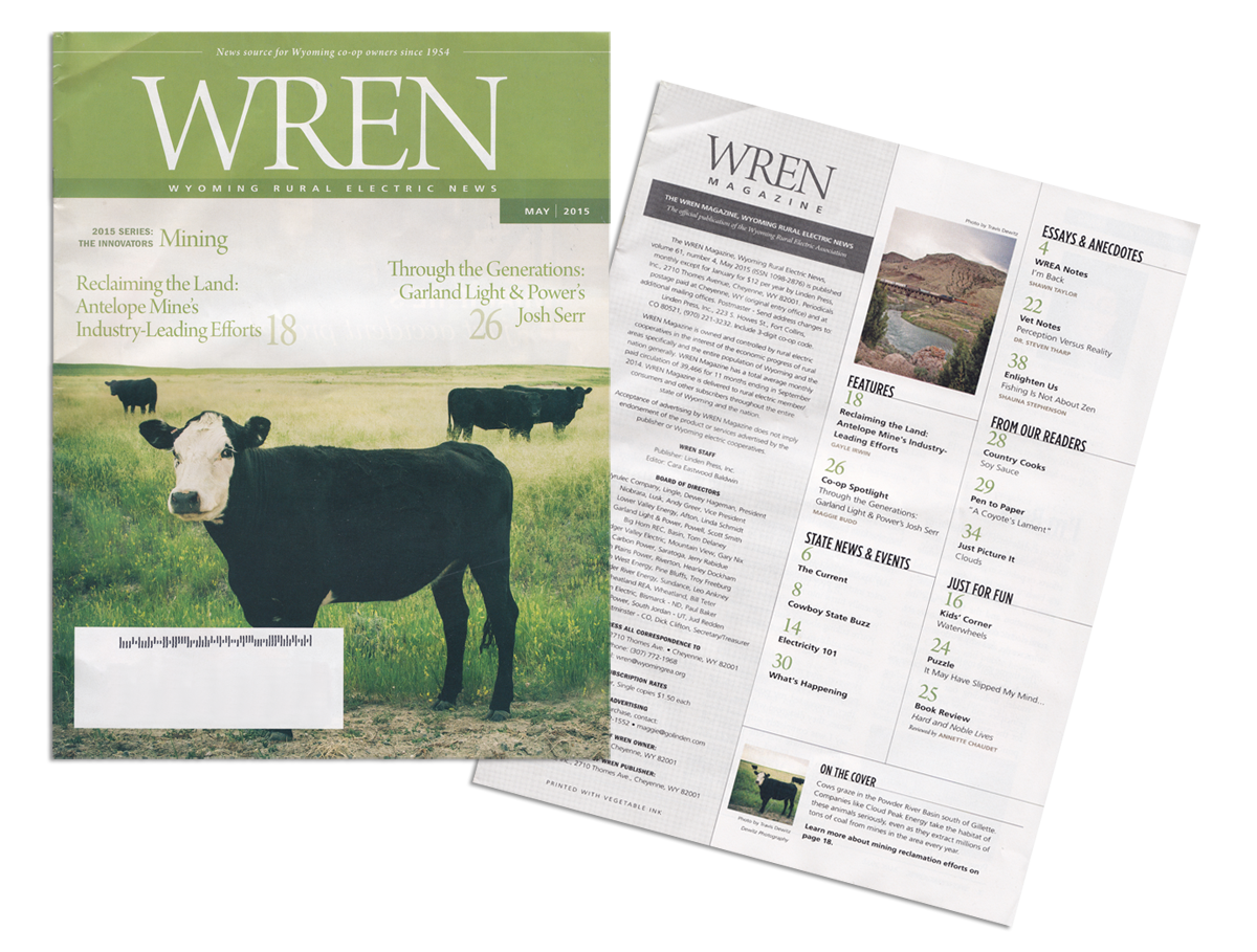 Wren Magazine Cover Photo