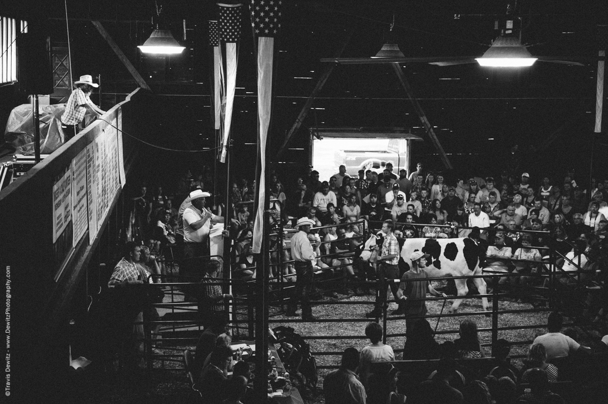 Northern Wisconsin State Fair Cattle Auction-7504