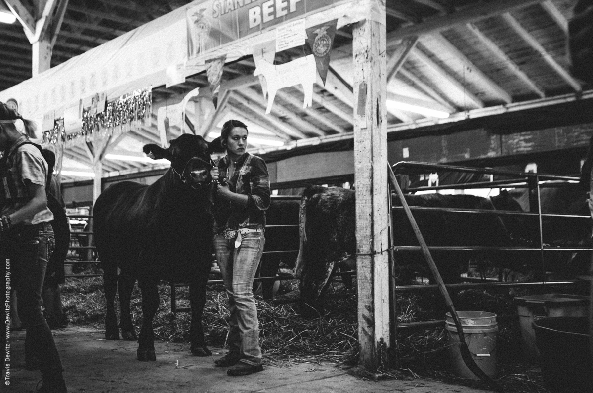 Northern Wisconsin State Fair Cattle Auction-7622