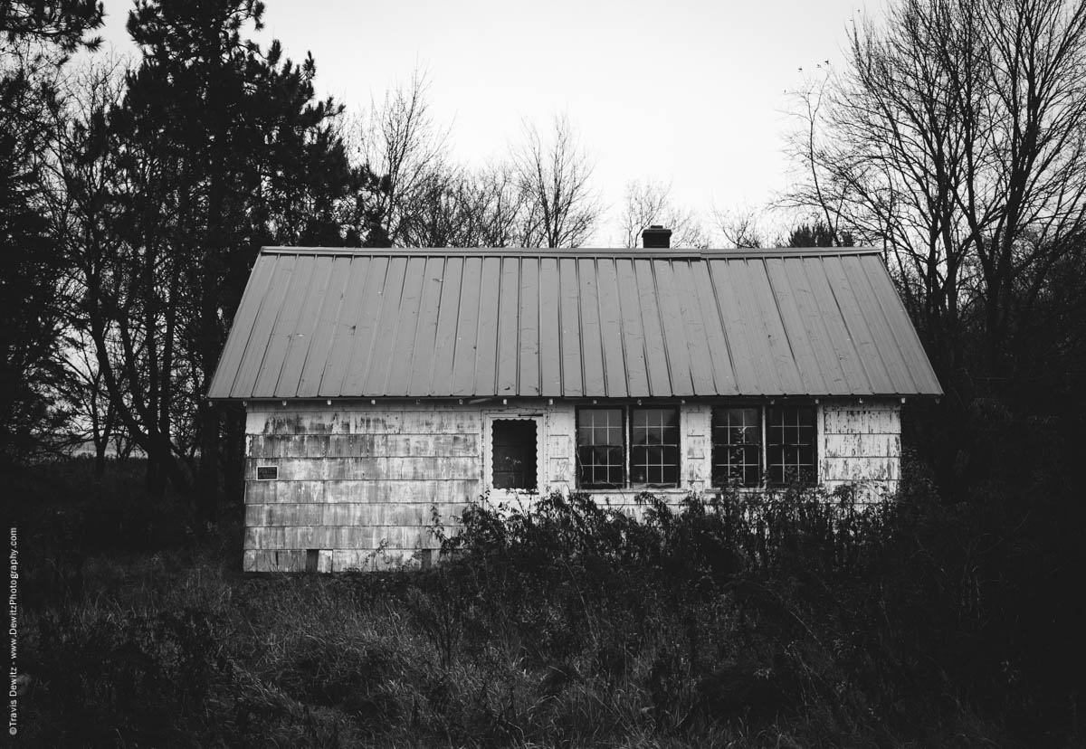house-in-the-weeds-elk-lake-wi-historic-city