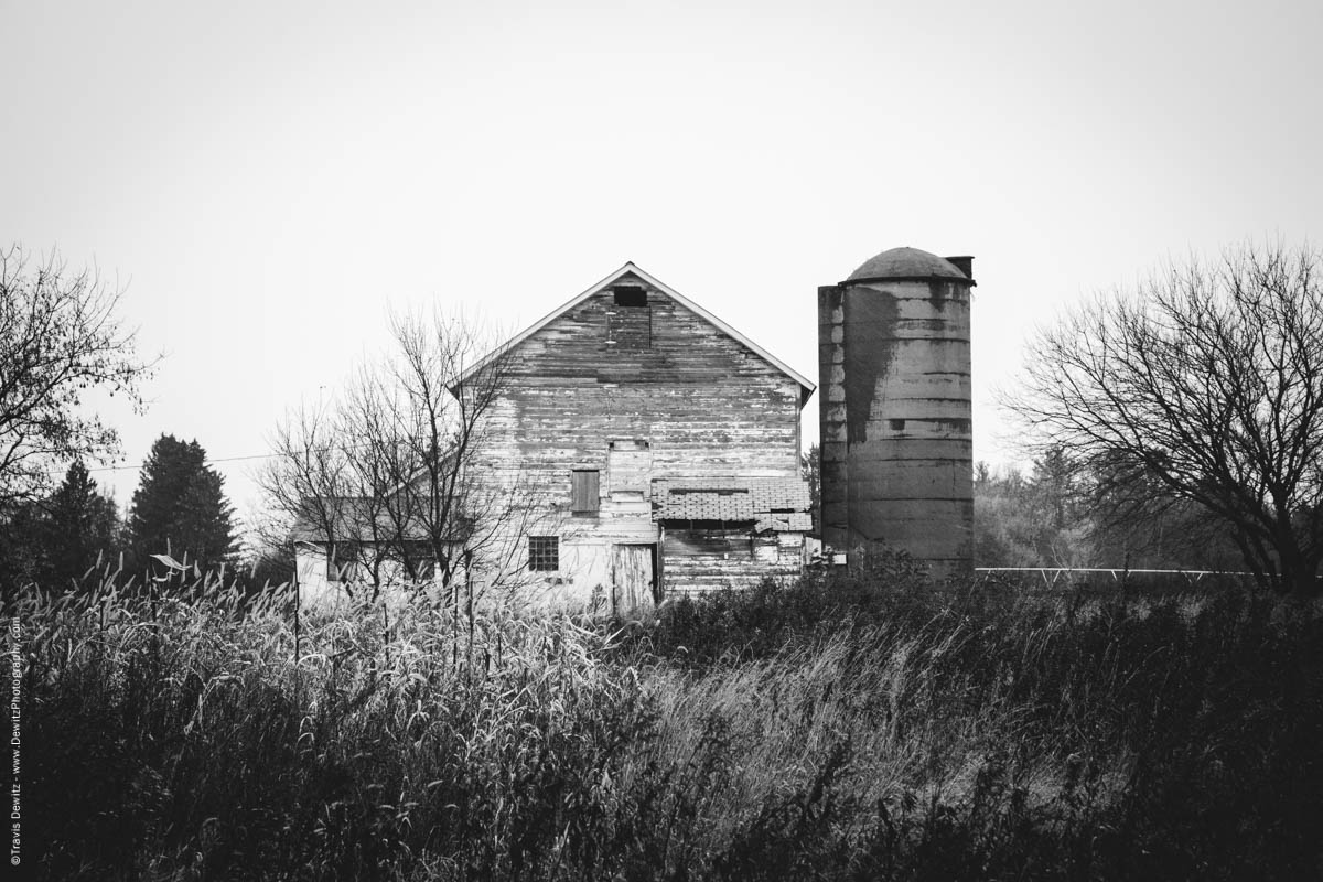 old-white-barn-in-weeds-elk-lake-wi-historic-city