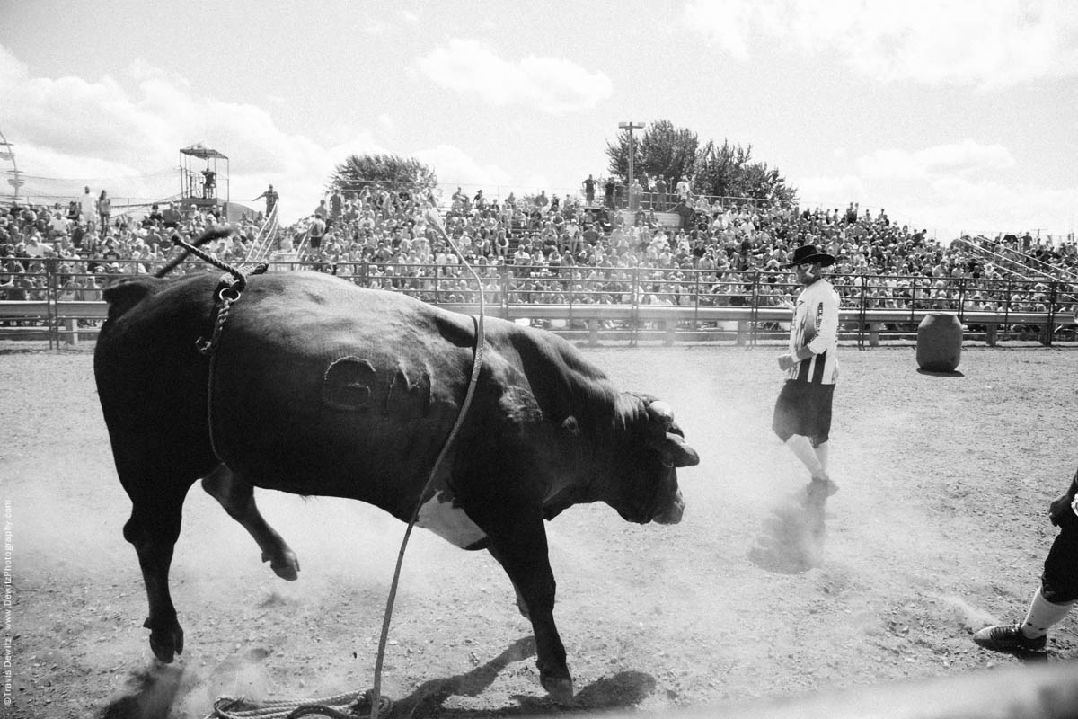 Aggressive Bull and Bullfighters-3122