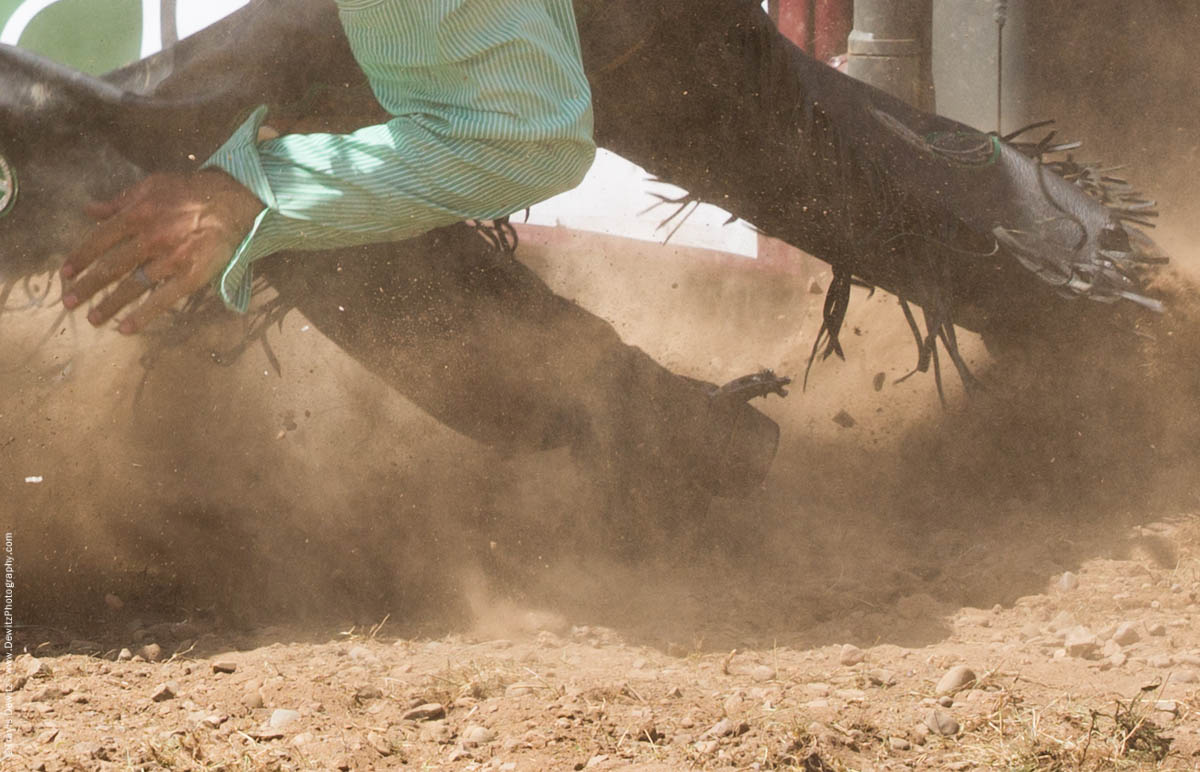 Falling Bull Rider with Chaps Kicks Up Dust and Dirt-2837
