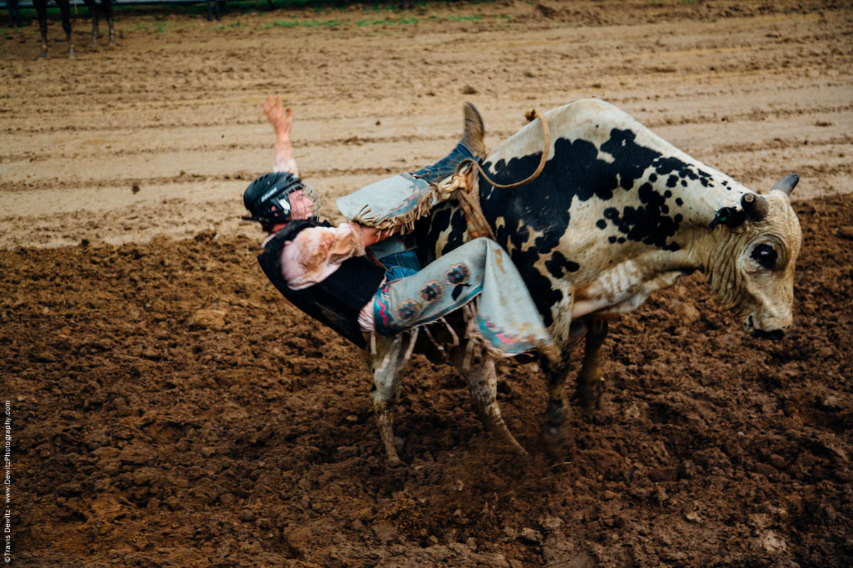 bull-rider-falls-off-spotted-bull-into-mud-4738