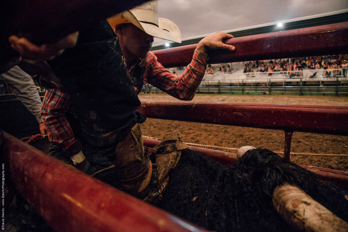 chute-gate-about-to-open-bull-riding-5077