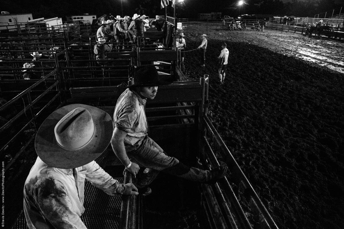 cowboys-in-chutes-at-night-time-rodeo-5208