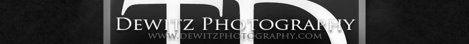 Dewitz Photography | Eau Claire, WI Portrait Photographer logo