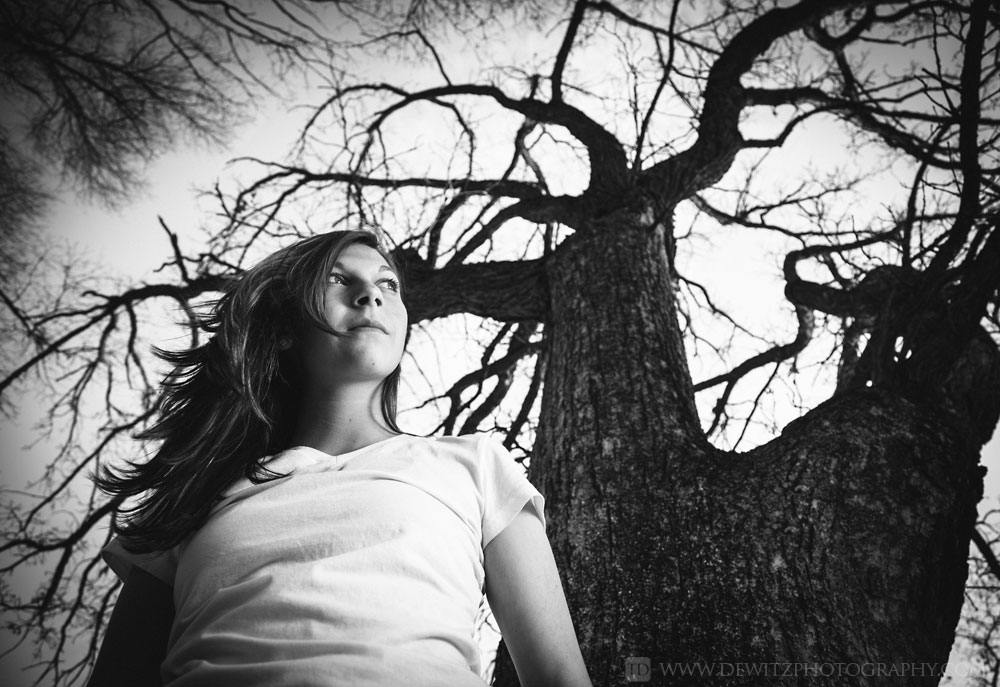 alexa_eerie_tree_portrait_looking_up