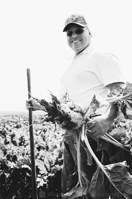 rine_farms_dan_holding_sugar_beet