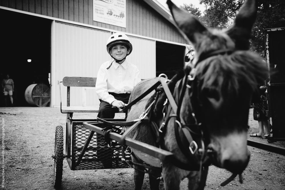 Northern Wisconsin State Fair Boy in Cart Pulled by Donkey
