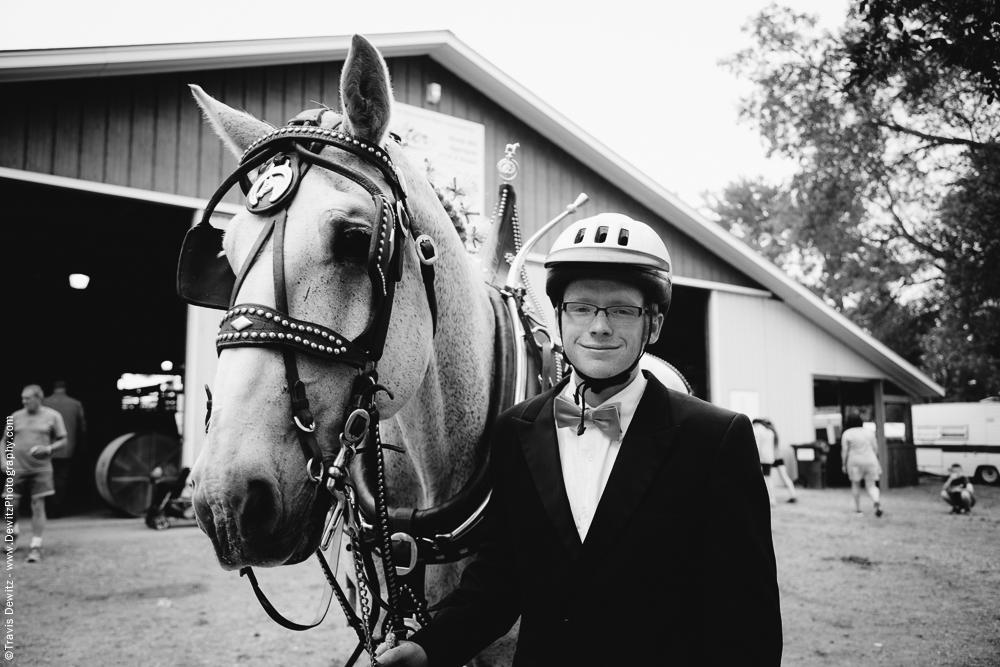 Northern Wisconsin State Fair Draft Horse Portrait