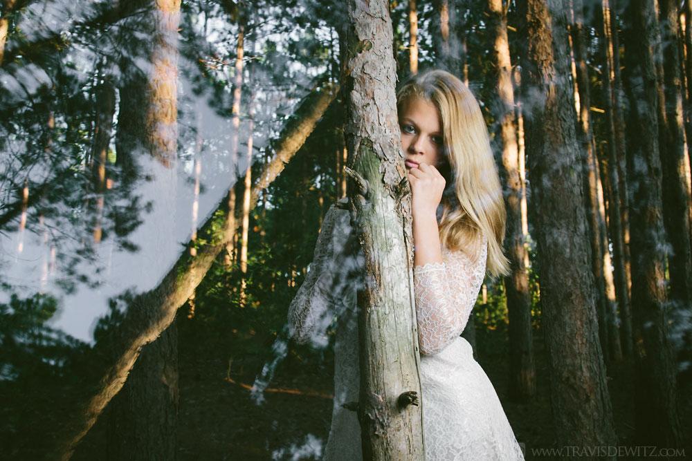 savonah_alice_tree_web