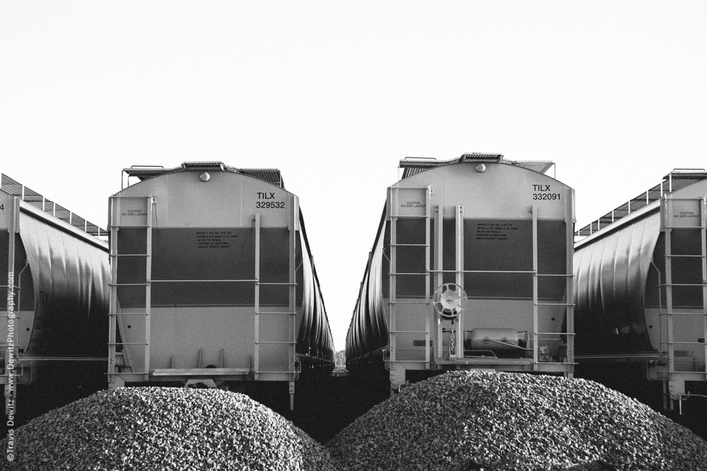 Sand Hoppers Waiting at Great Northern