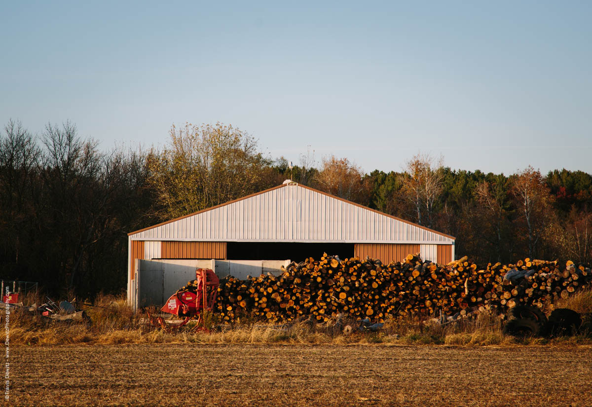 caryville-wi-logging-business
