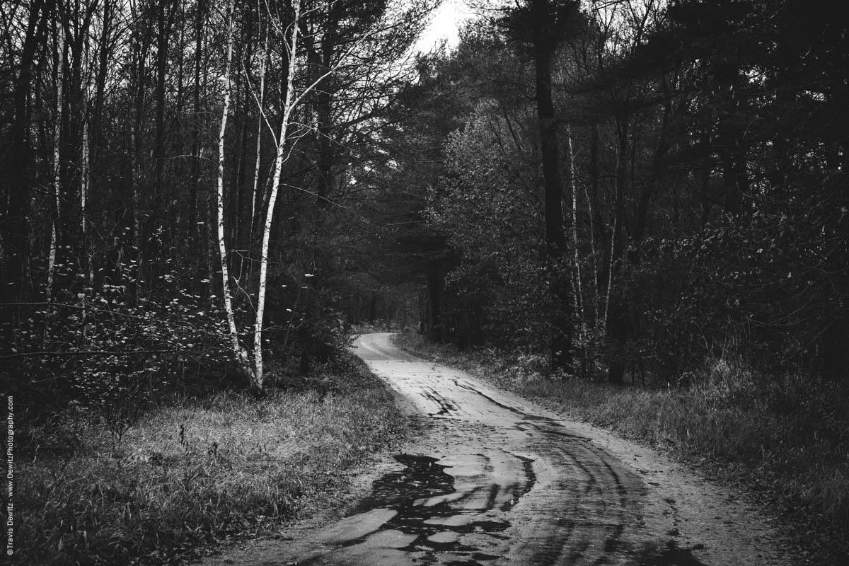 curvy-road-through-woods-elk-lake-wi-historic-city