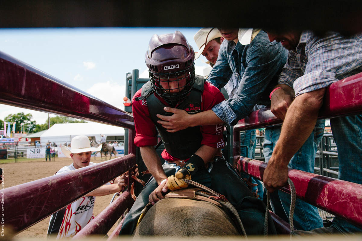1-Bull Rider Gets Ready in Chute-3088