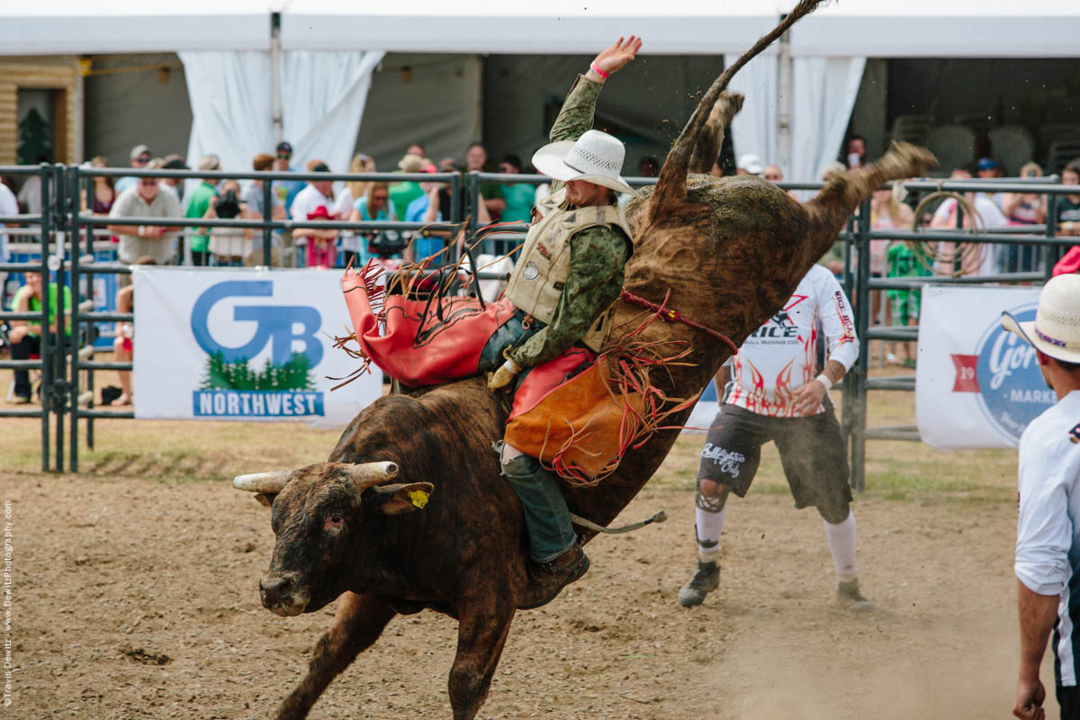 Action Shot of Bull Riding-2991