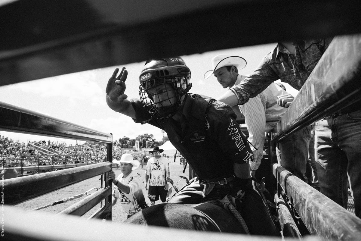 Bull Rider Exits Chute Hand Up-3116