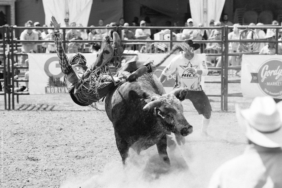 Bull Rider Flying Off Bull in Arena-3002