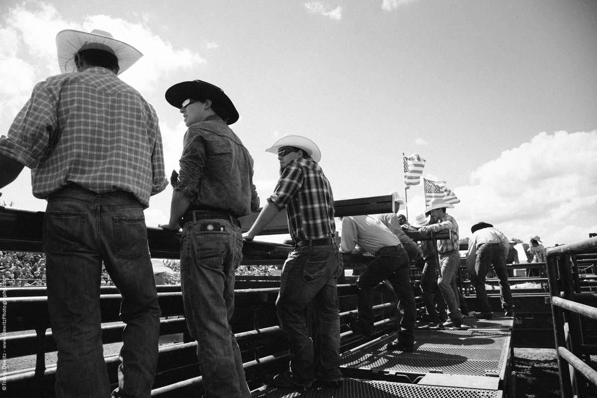 Bull Riders in Cowboy Hats Look On-3126