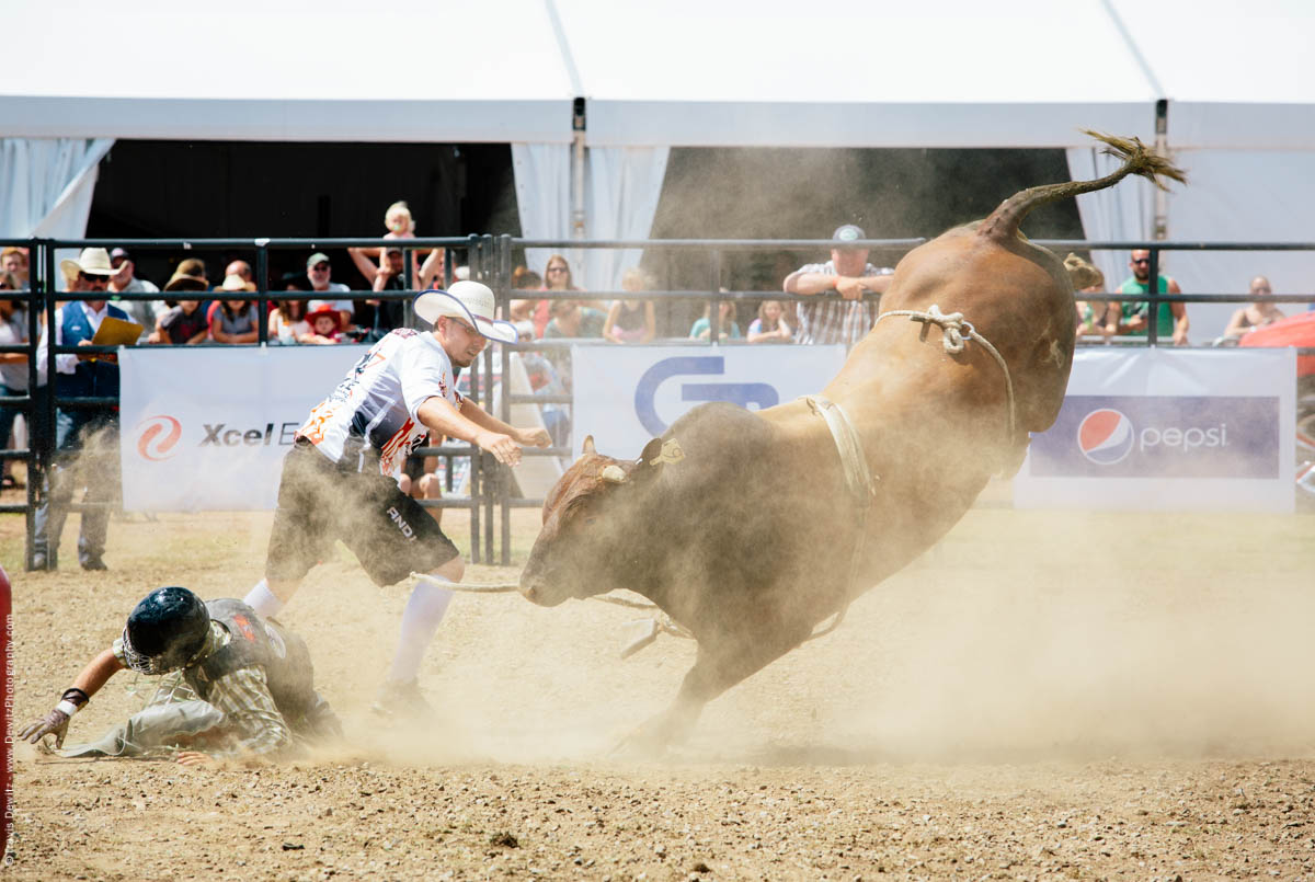 Bull Throws Rider Kicking in Air-2801