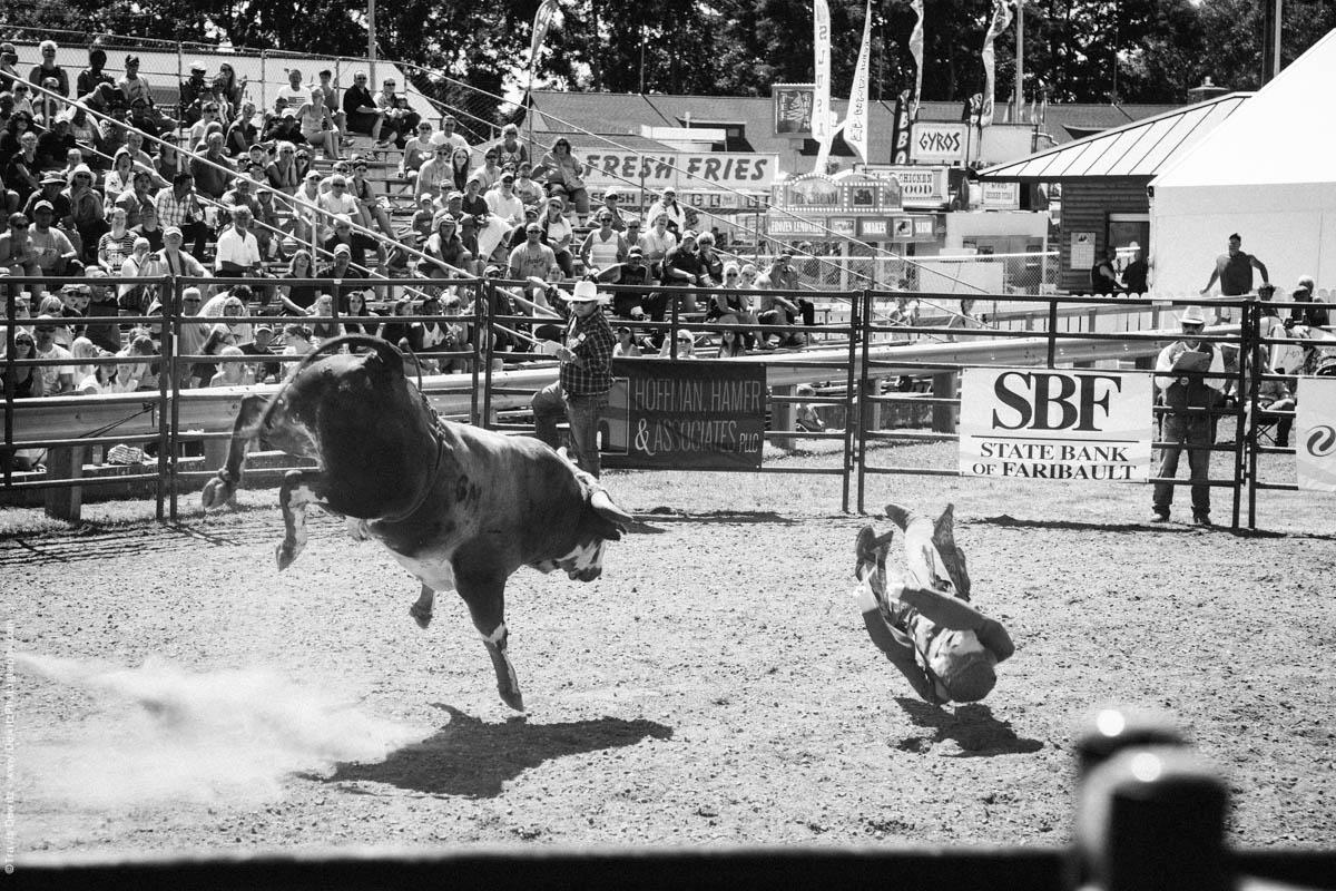 Jumping and Kicking Bull Attacks Dummy-3135