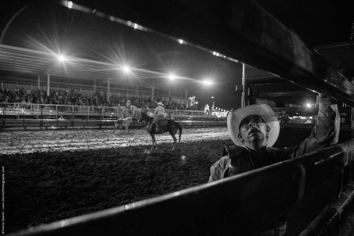 bull-rider-after-ride-5394