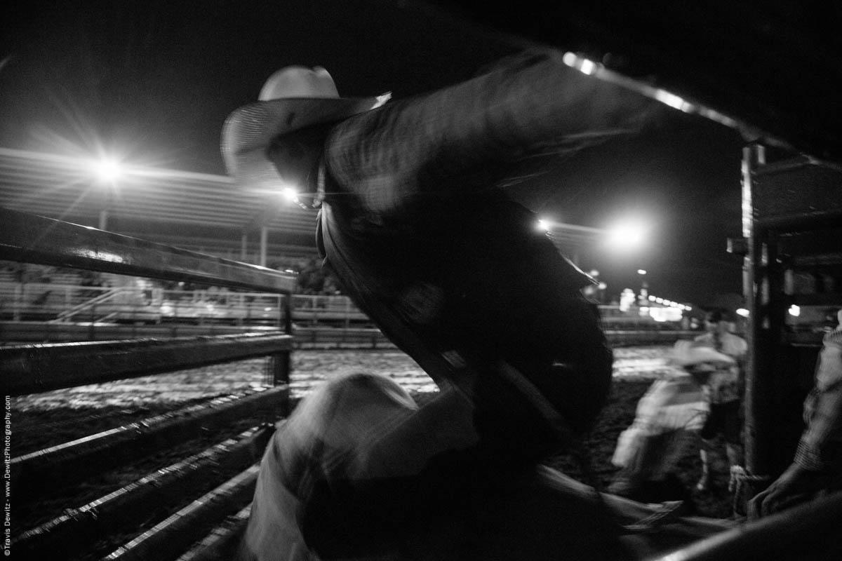 bull-rider-flies-out-of-chute-blur-5377
