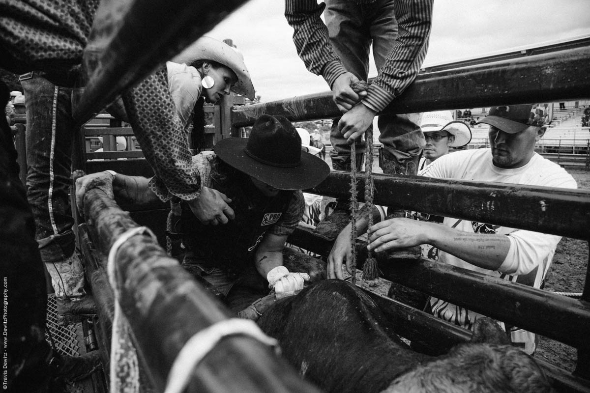 bull-rider-gets-strapped-on-bull-in-chute-black-cowboy-hat-black-river-falls-wi-rice-bull-riding-4816