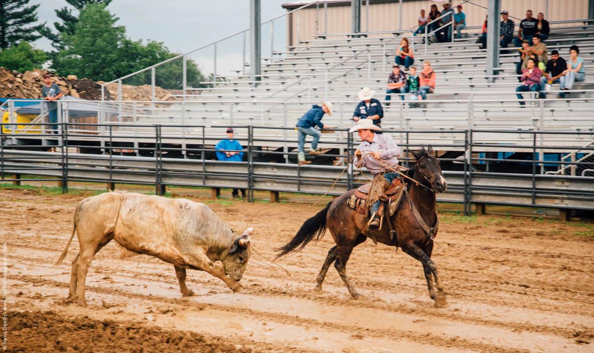cowboy-ropes-bull-in-mud-4733