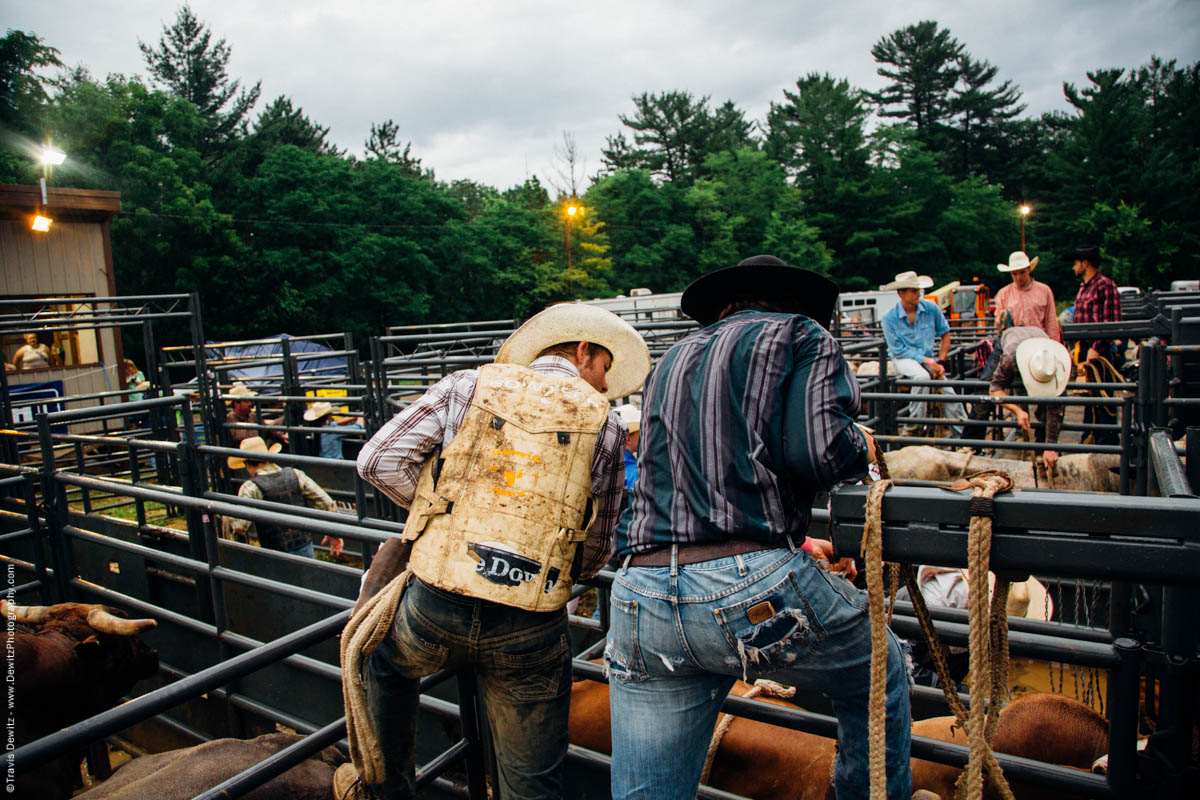 cowboys-inspect-riding-bulls-4559