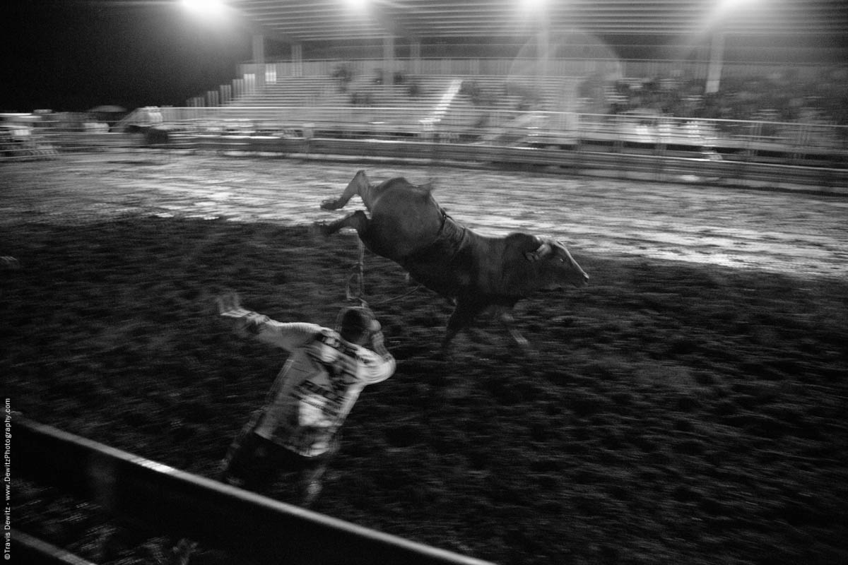 kicking-bull-runs-wild-5431