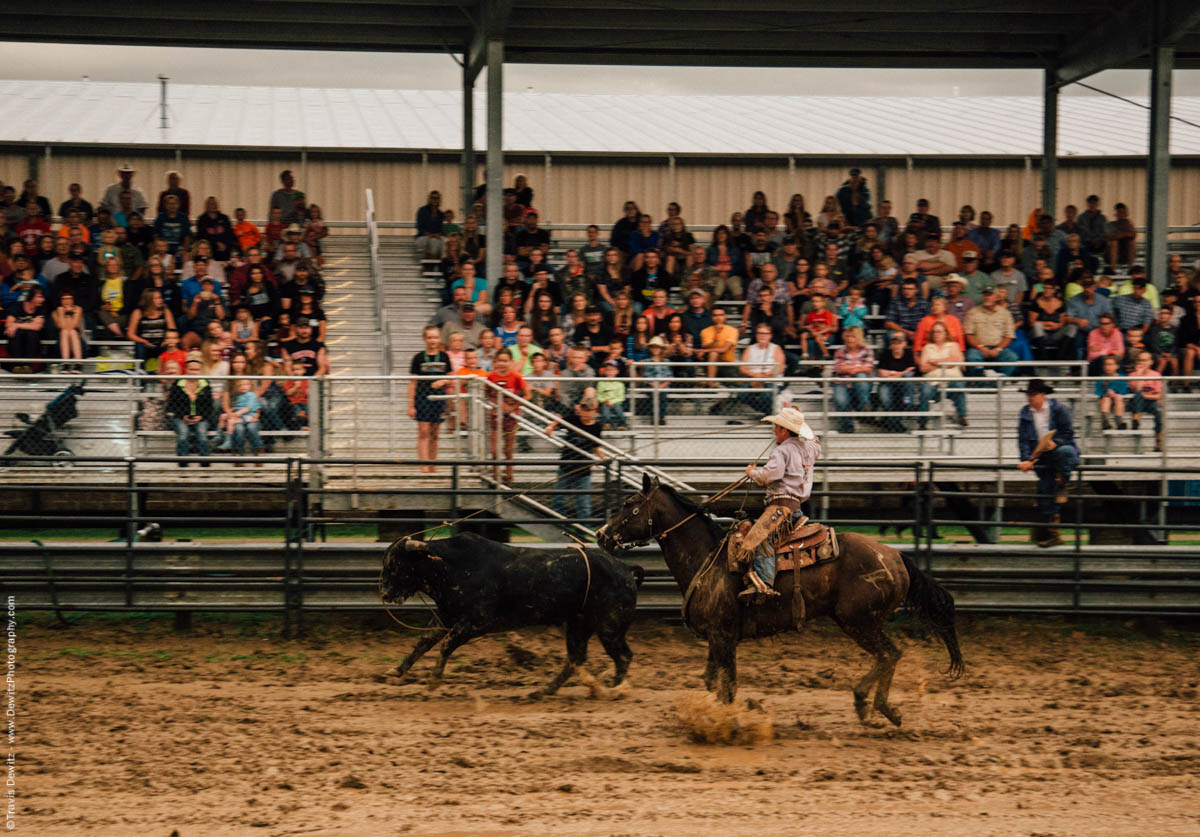 mud-flies-from-horse-roping-bull-4944
